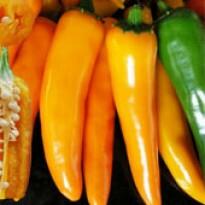 Pimenta Hot Suprema - 50 sementes