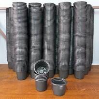 1000 Mini Potes NP06 - Atacado - Vasinho para Cactos e Suculentas