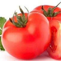 Tomate Híbrido Chapolin (Ref 268)