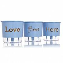 Trio Love Grows Here - Autoirrigável T3 Médio - Cor Azul - Linha Wishes