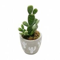 Vaso Embossed Cactus em Cimento - Pequeno