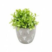 Vaso Embossed Cactus em Cimento 12,4x13,5 cm - 41075