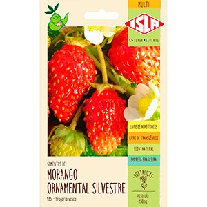 Morango Ornamental Silvestre (Ref 185)