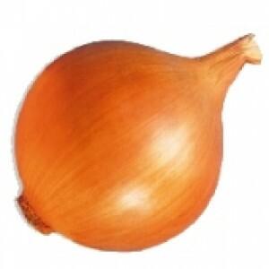 Cebola Baia Periforme (Ref 071)