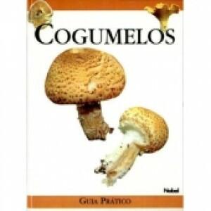 Cogumelos: Guia Prático