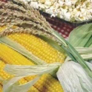 Milho Pipoca Americano - 100 gramas (Ref 508) - Lote:122283