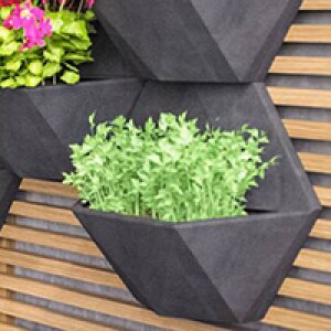 Módulo para Jardim Vertical Favo 35x30,3 cm - Cor Grafite