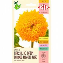 Girassol de Jardim Dobrado Anão (Ref 390)
