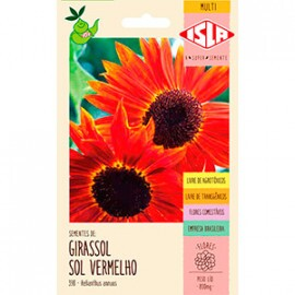 "Girassol ""Sol Vermelho"" (Ref 398)"