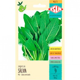Sálvia Officinalis (Ref 496)