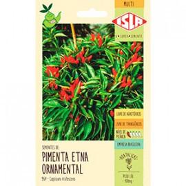 Pimenta Etna Ornamental (Ref 964)