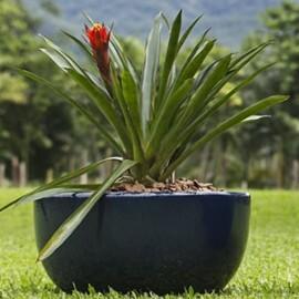 Vaso Fibra de Vidro - Bacia 59 - 26 alt x 59 diâm - Diversas Cores - Rotogarden