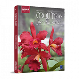 Coleção Rubi - Orquídeas da Natureza Volume 2: Orquídeas Perfumadas