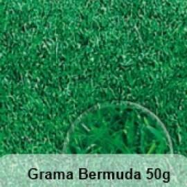 Grama Bermuda 50g