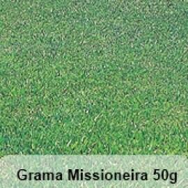 Grama Missioneira (Carpete) - 50g