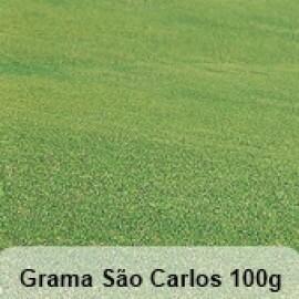Grama São Carlos - 100g