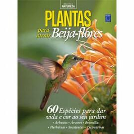 Especial Natureza - Plantas para atrair Beija-flores