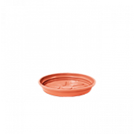 Prato N02 (3,0 x 16 cm) - Cor Cerâmica