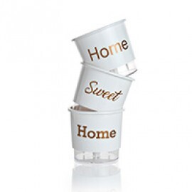 Trio Home Sweet Home - Autoirrigável T3 Médio - Cor Branca