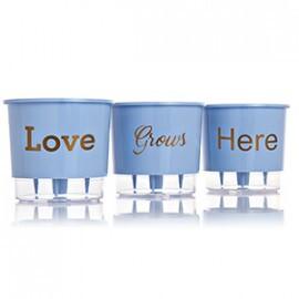 Trio Love Grows Here - Autoirrigável T3 Médio - Cor Azul Serenity