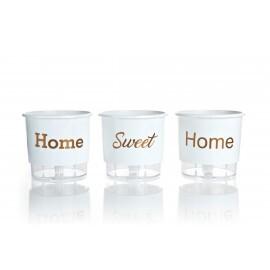 Trio Home Sweet Home - Autoirrigável T2 - 12x11 cm - Cor Branca
