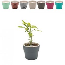 Vaso Autoirrigável Pequeno - Linha Plantar - 10,5x12,5 cm - 830 ml