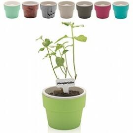 Vaso Autoirrigável Grande - Linha Plantar - 15,5x16,5 cm - 2,2 Litros