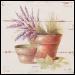 Quadro Madeira 30x30cm - Vasos e Flor - CP0173