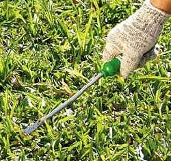 Como usar o extrator de ervas Trapp