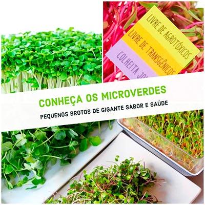 sementes para Microverde Isla