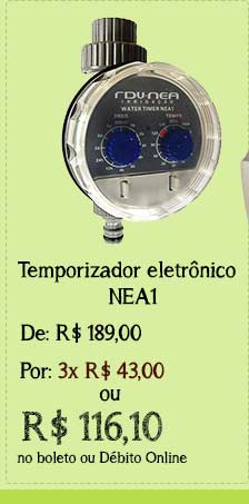 Timer Nea1