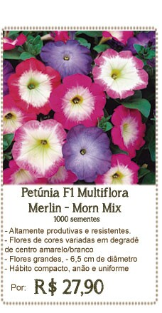 Petunia Merlin Mix