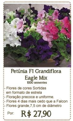 Petunia Eagle Mix