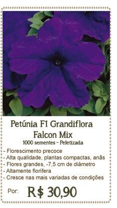 Petunia Falcon Mix